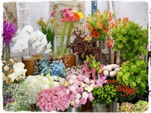 店舗のお花