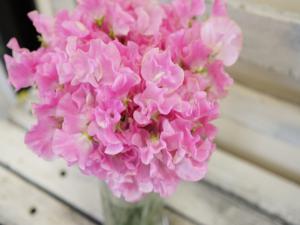 スィートピー花束