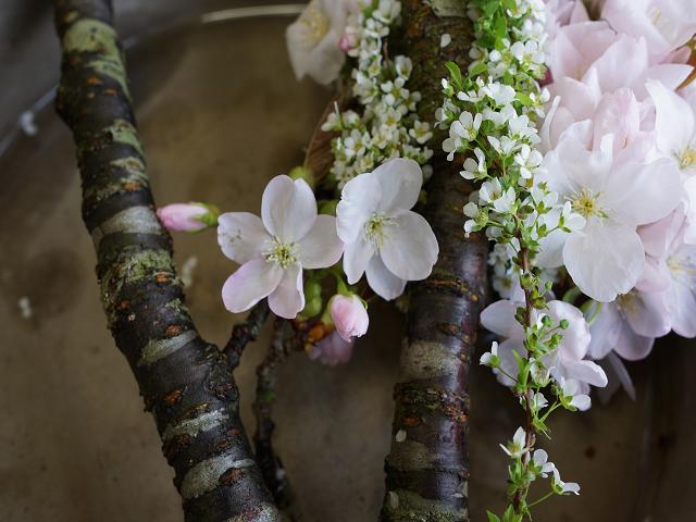 桜アレンジメント