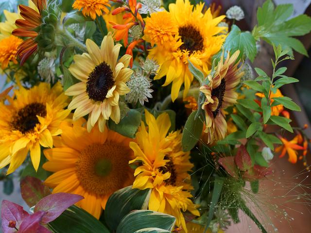 いいことのはじまりに花贈り
